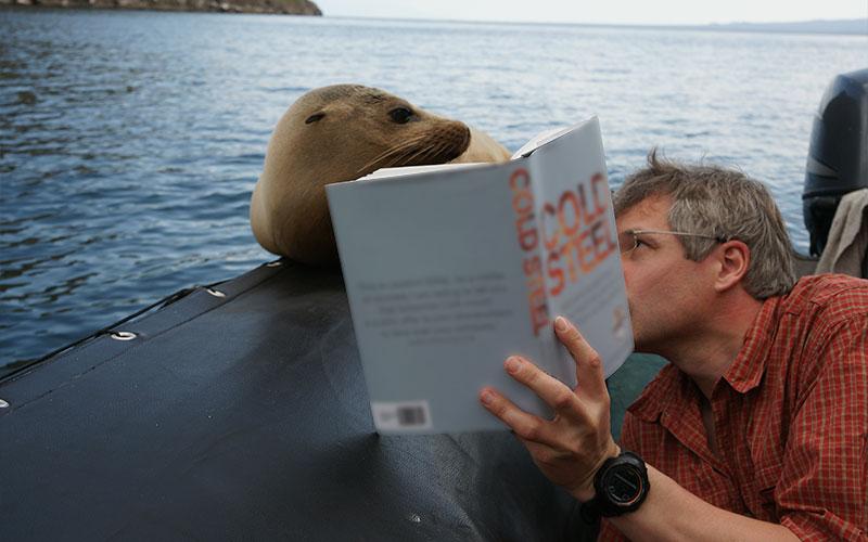 sealion wildlife galapagos ecuador charles darwin vacations travel trip tours