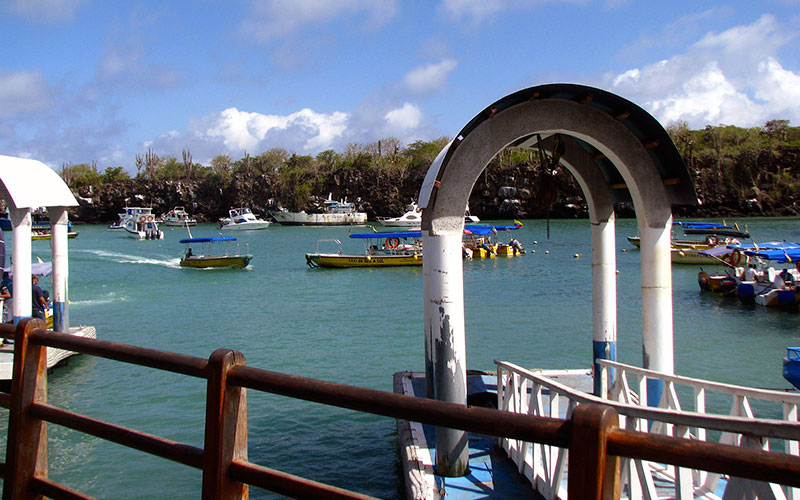 transfer islandst traveling galapagos islands ecuador boats family vacations solo traveler adventure