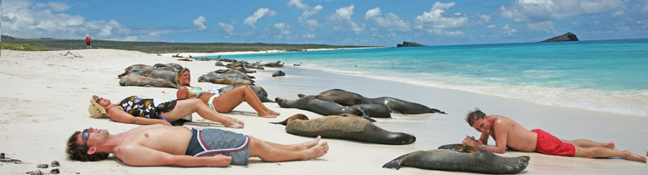 Reviews On Cruises To Galapagos Islands By National