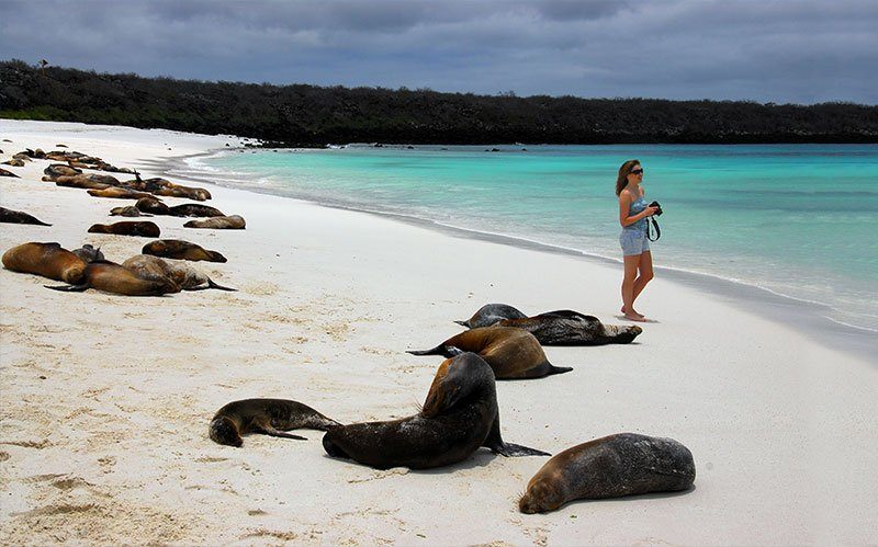 Best beaches in galapagos