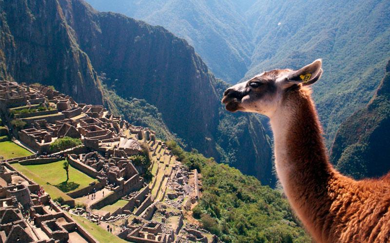 peru travel destination machu picchu galapagos ecuador