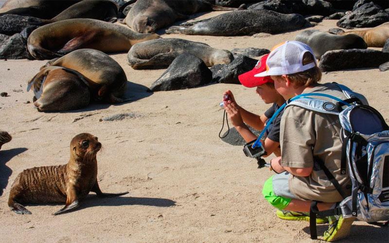 kids sealion galapagos family vacation travel tour ecuador galapagosislands