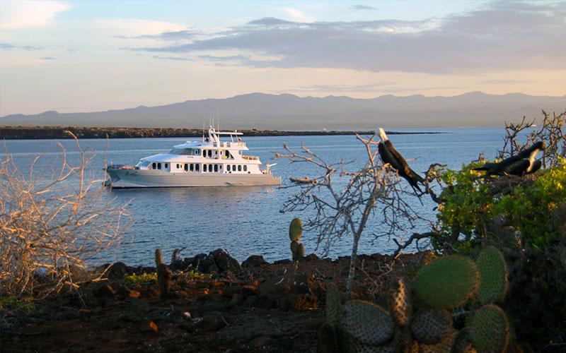 cruise boat tourism galapagos islands ecuador travel tour history
