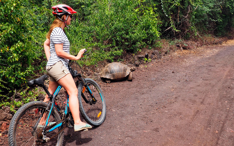 how to get to galapagos moving around bicycle