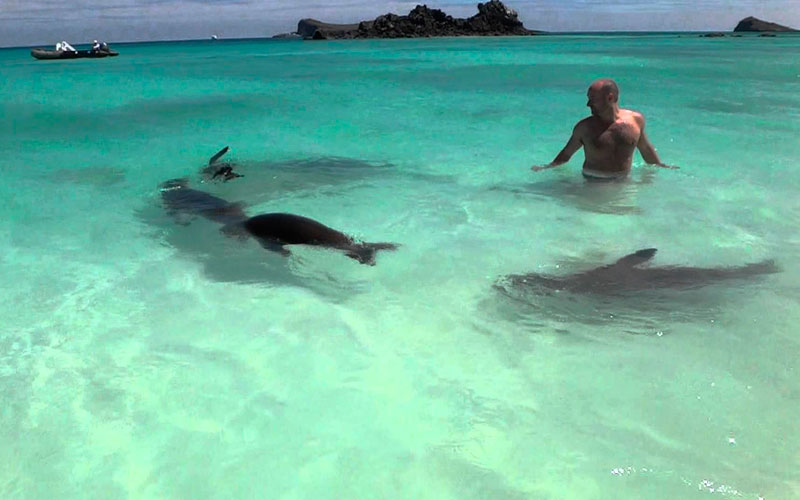 sea best time galapagos sky summer vacation travel summer winter ecuador galapagos islands