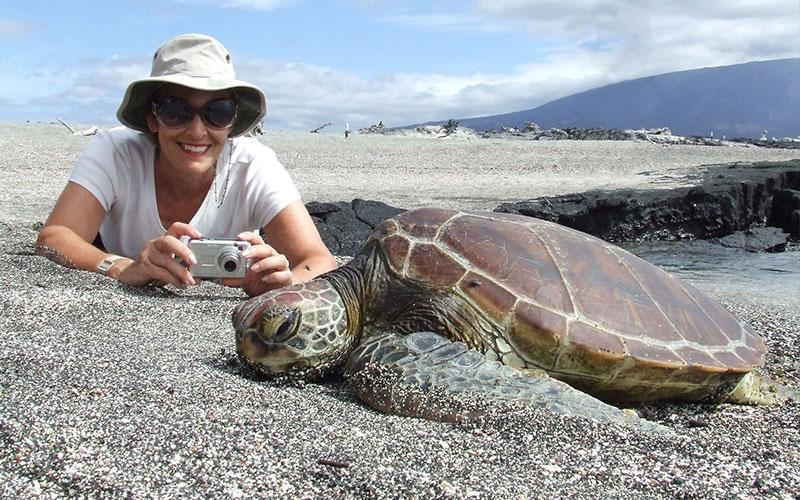galapagos-sea tortoise galapagosislands ecuador photography travel