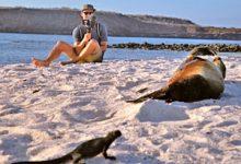 galapagos safari