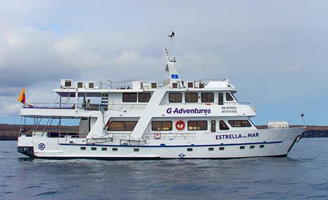 Image result for estrella del mar galapagos