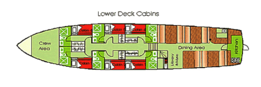 Floreana Lower Deck Cabins