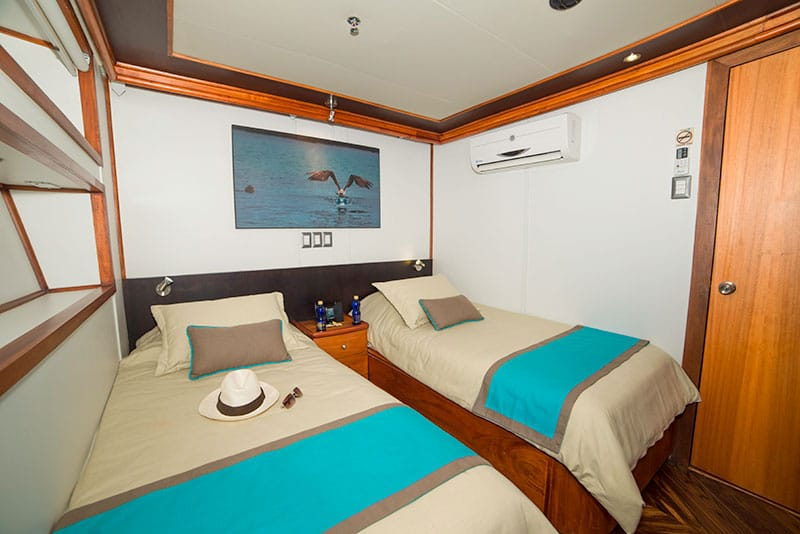 Majestic first class yacht galapagos islands com for First class cruise ship cabins
