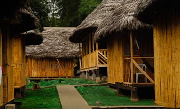 Amazon Dolphin Lodge - Amazon Jungle