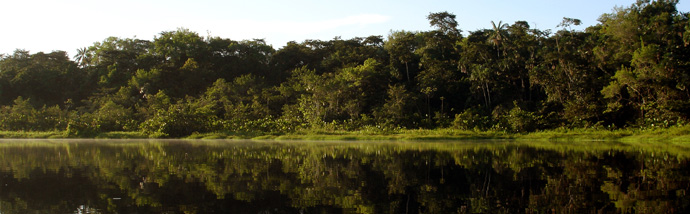 Ecuador Amazon