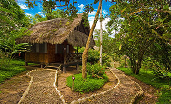 Cotococha Lodge - Amazon Jungle