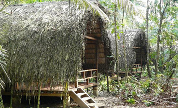 Huaorani Lodge - Amazon Jungle