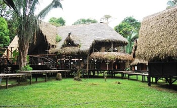 Jamu Lodge - Amazon Jungle