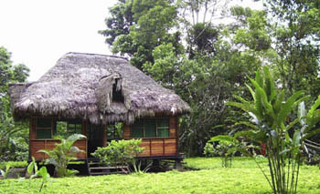Suchipakari Lodge - Amazon Jungle