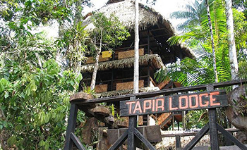 Tapir Lodge - Amazon Jungle