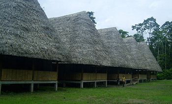 Yasuni Kichwa Ecolodge - Amazon Jungle