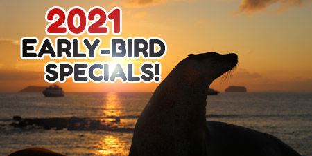 galapagos-deals-promotion