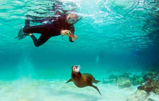 Best Travel Agency Galapagos Islands